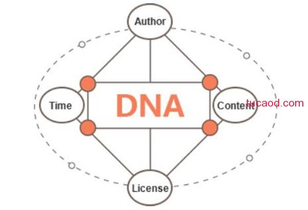 互联网信息生成唯一的身份DNA