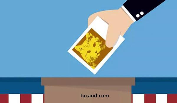投票给老猫_EosLaoMaoeos节点竞选