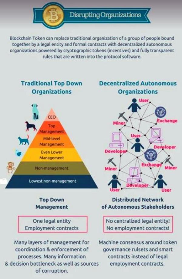 公司结构和去中心化的匿名组织对比