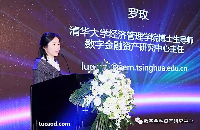 清华经管数字金融资产研究中心主任罗玫发表演讲