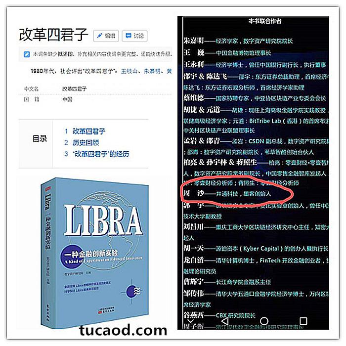 朱嘉明libra一种金融创新试验-井底望天