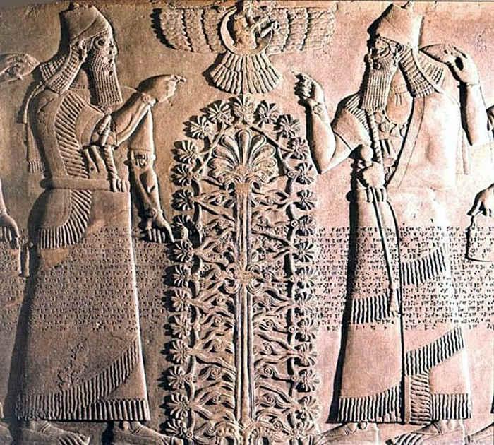 苏美尔人生命树的图片